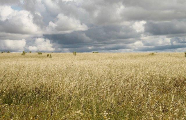 Llanos de Cáceres y Sierra de Fuentes - Foto: Guillermo Prudencio@flickr